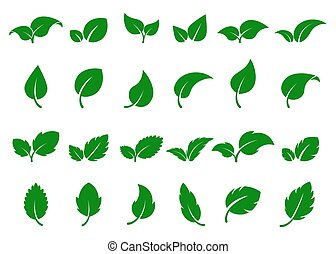 Green leaves logo. Leaf icon set. Herbal eco abstract label. Bio, vegan or pharmacy concept. Fresh mint isolated sign. Vector tree sprout
