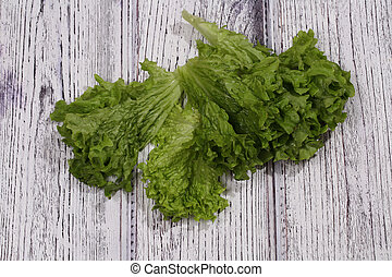 Green leaves of fresh salad on a wooden table