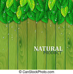 Green leaves on a wooden background