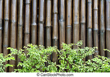 green leaves on bamboo background