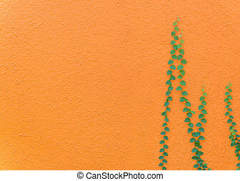 green leaves on orange wall textured for background