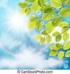 Green leaves on sky background