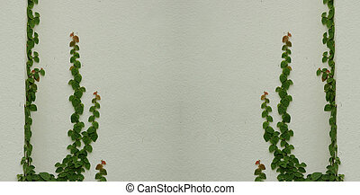 green leaves on wall for background
