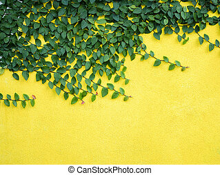 green leaves on yellow concrete wall background exterior home design