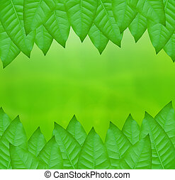 green leaves over abstract