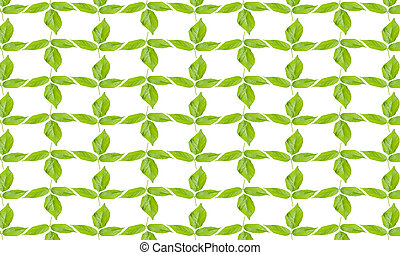 Green leaves pattern on white background