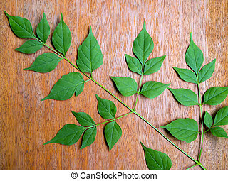 Green leaves placed on the wooden board