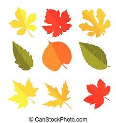 Green leaves set, vector