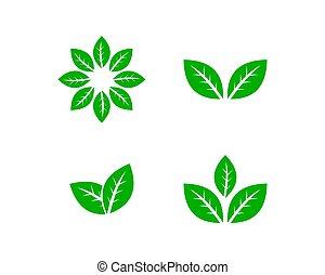 Green Leaves Set Vector Logo Template