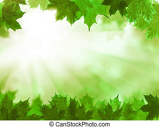 Green Leaves. Summer Blossom Background