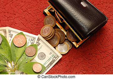 Green leaves with coins and a purse on a red background
