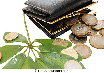 Green leaves with coins and a purse on white background