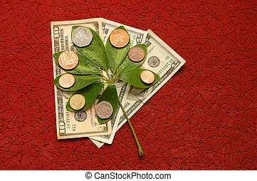 Green leaves with coins  on a red background