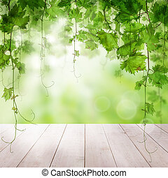 Green leaves with sunlight wooden background
