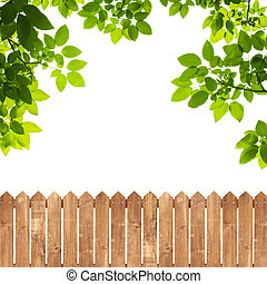 Green leaves with wood fence on white background