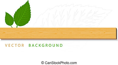 Green leaves with wood on white background