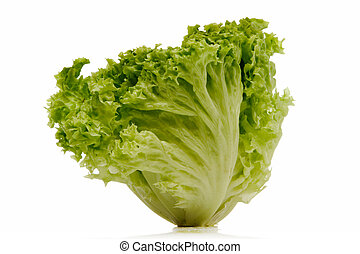 green lettuce isolated over white background