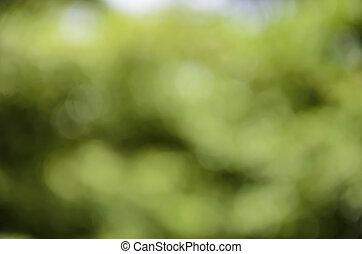 Green light blur background