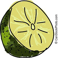 Green lime, illustration, vector on white background.