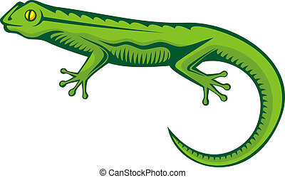 Green lizard - A green lizard with woodcut shading isolated...