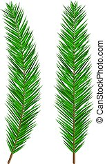 Green lush spruce branch. Evergreen tree, fir branches. Happy new year decoration. Merry christmas holiday. New year and xmas celebration. Vector illustration in flat style