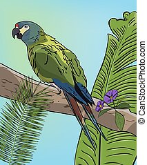 Green macaw parrot on branch. Vector Tropical background...