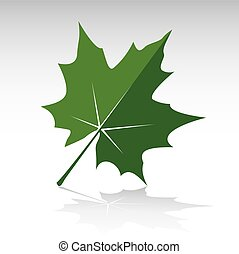 Green Maple Leaf. Vector illustration and icon.
