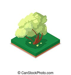 Green maple tree isometric 3D icon
