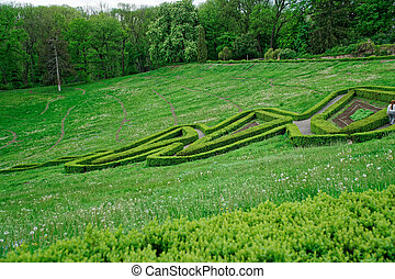 Green maze and Garden stone path with grass growing up between the stones. Detail of a botanical garden