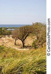 Green Meadow Along Coastline