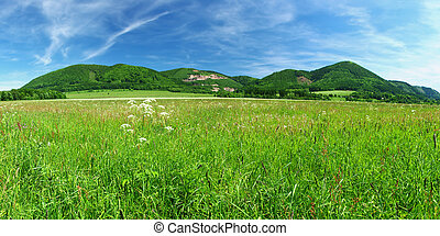 Green meadow and hills at the horizon