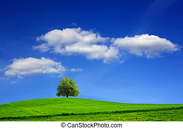 Green meadow and tree on blue sky