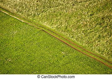 Green meadow diagonal tractor track