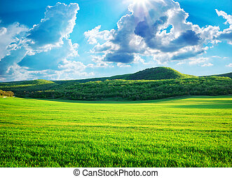 Green meadow in mountain