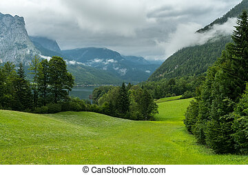Green meadow in the alps on a cloudy day