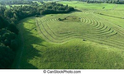 green meadows aerial view