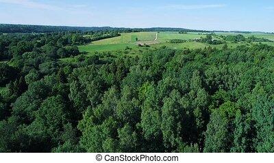 green meadows aerial view - green meadows at summer. aerial...