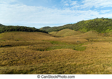 Green meadows and mountains landscape Horton Plains National...