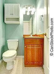 Green mint fresh color small new bathroom.