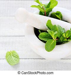 green mint in a mortar, herbs