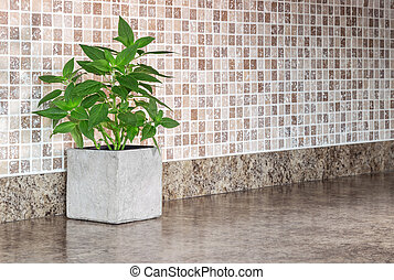 Green mint on kitchen countertop - Pot with green mint on...