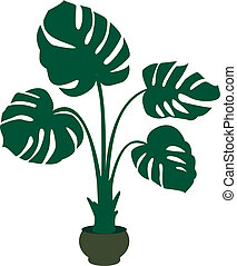 green monstera plant background. Vector illustration