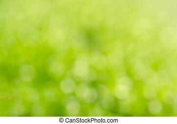 green moss blur background fresh nature