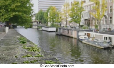 Green moss on the waterfront of AmsterdamView to the barges at the Amstel canal in Amsterdam, Netherlands