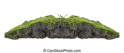 Green moss with grass on pile of soil isolated on a white background