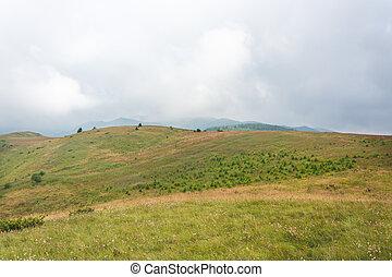 Green Mountain Pasture