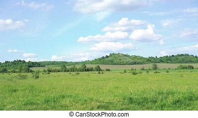 Green mountains, grass, sky background