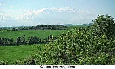 Green mountains, rocks, fields landscape