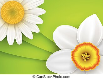 Green natural background with white flowers