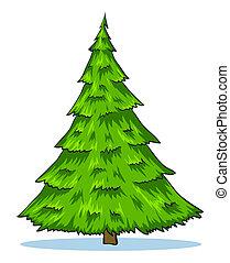Green natural christmas tree
